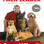 Be the Pack Leader (Fii Seful Haitei) – Cesar Millan