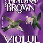 Violul – Sandra Brown