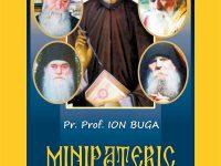 Minipateric contemporan,  Autor: Pr. Prof. Ion Buga