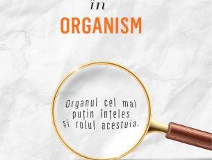 Viața și importanța grăsimii în organism – Dr. Sylvia Tara